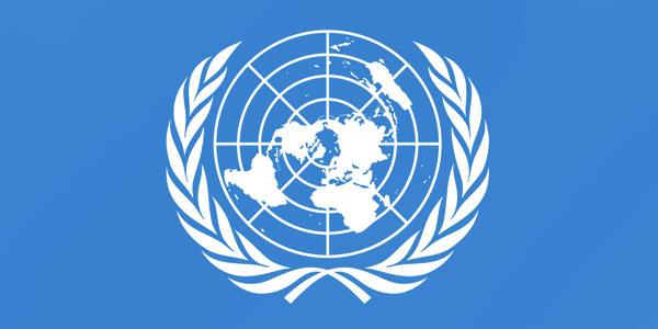 برگههای اطلاعرسانی سازمان ملل