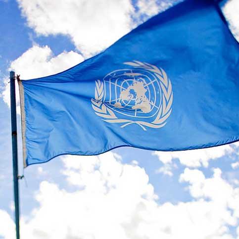 درخواستهای رسمی شورای اقتصادی و اجتماعی سازمان ملل متحد از دولت ایران